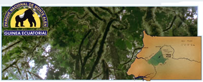 La maravillosa vida de sara alondra quevedo cuevas - 3 part 9
