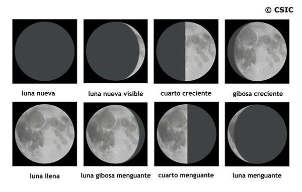 Las fases de la luna - El Universo de los Niños